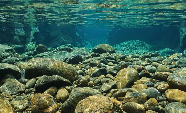 川底、海底、湖底