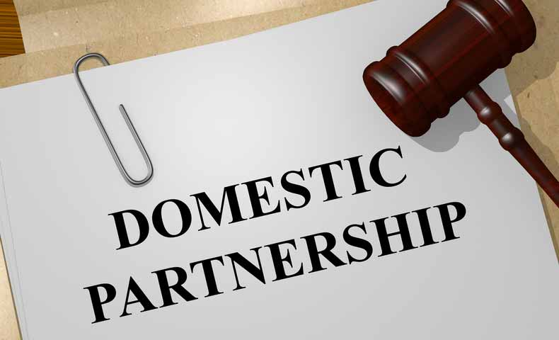 domestic partnershipの意味