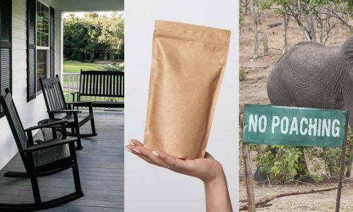 porch / pouch / poachの意味と発音の違い