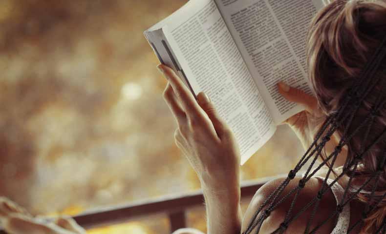 小説や映画の筋書き