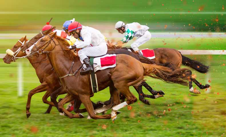 race(レース・競争)