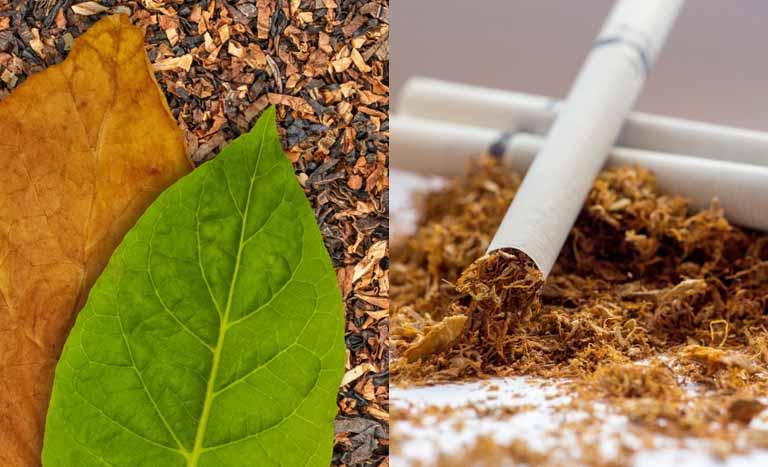 タバコ(tobacco)とシガレット(cigarette)の違い