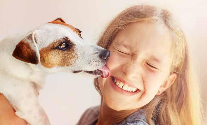 lickの意味と使い方
