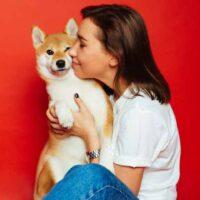 pup / puppy / pooch / doggy / canineなどdog(ドッグ)以外の犬の言い方について